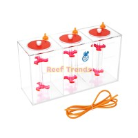 Coral Box Triple Dosing Container